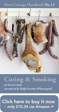 Curing and Smoking only £10.34, buy it now via Amazon