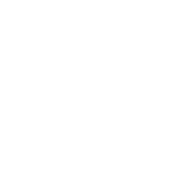 Multi Lingual Website